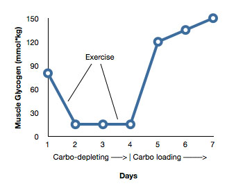 """carb cycling and metabolism"""